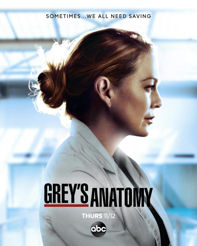 The poster for season 17 of Grey's Anatomy