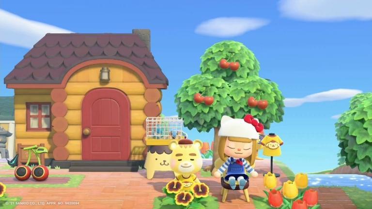 Explore Nintendo's New Island