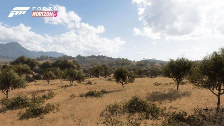 Arid hills environment