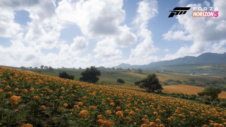 Farmland in Forza Horizon 5